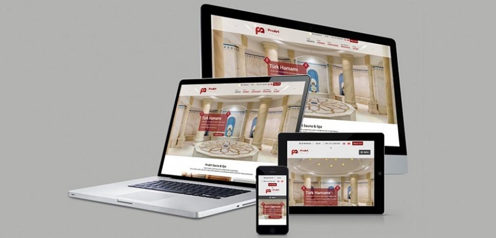 ProArt Web Site Tasarımı