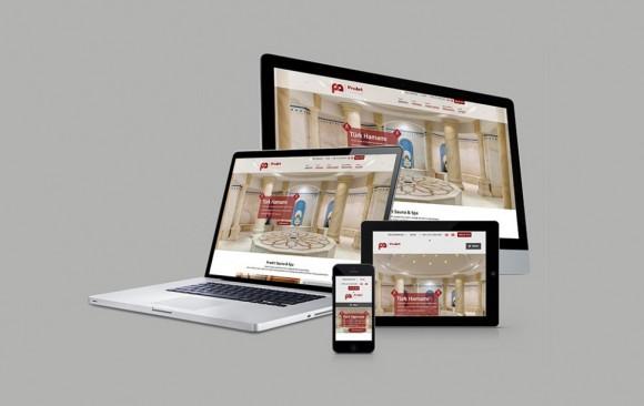 ProArt Sauna Web Tasarımı
